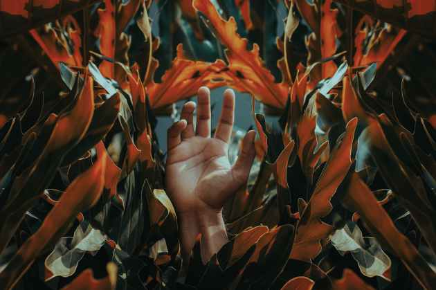 hand among orange leaves